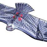 eng_pl_Great-Eagle-Flying-Dragon-for-Kids-Adults-Huge-200-x-83-cm-Wingspan-Dragonfly-Lifelike-Black-8560-13685_4-1